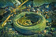 "New artwork for sale! - "" Garbage Debris Waste Mature Old  by PixBreak Art "" - http://ift.tt/2lXjR3v"