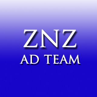 ZNZADTEAM.COM - The REAL Work from Home Experience