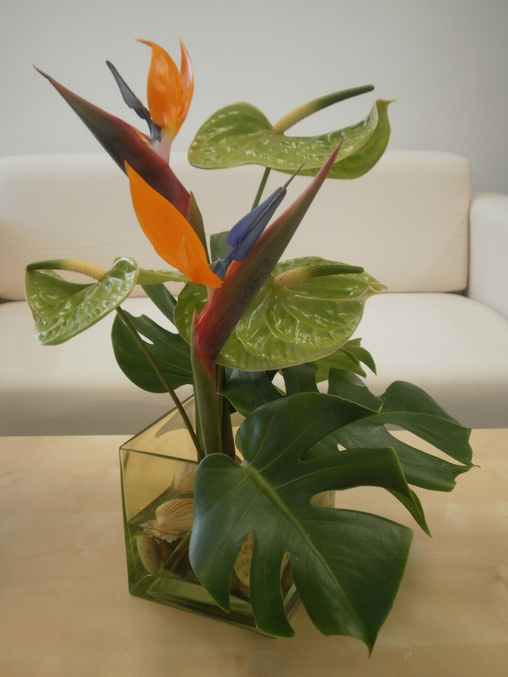Bird of paradise, anthurium and monstera leaf centerpiece ...