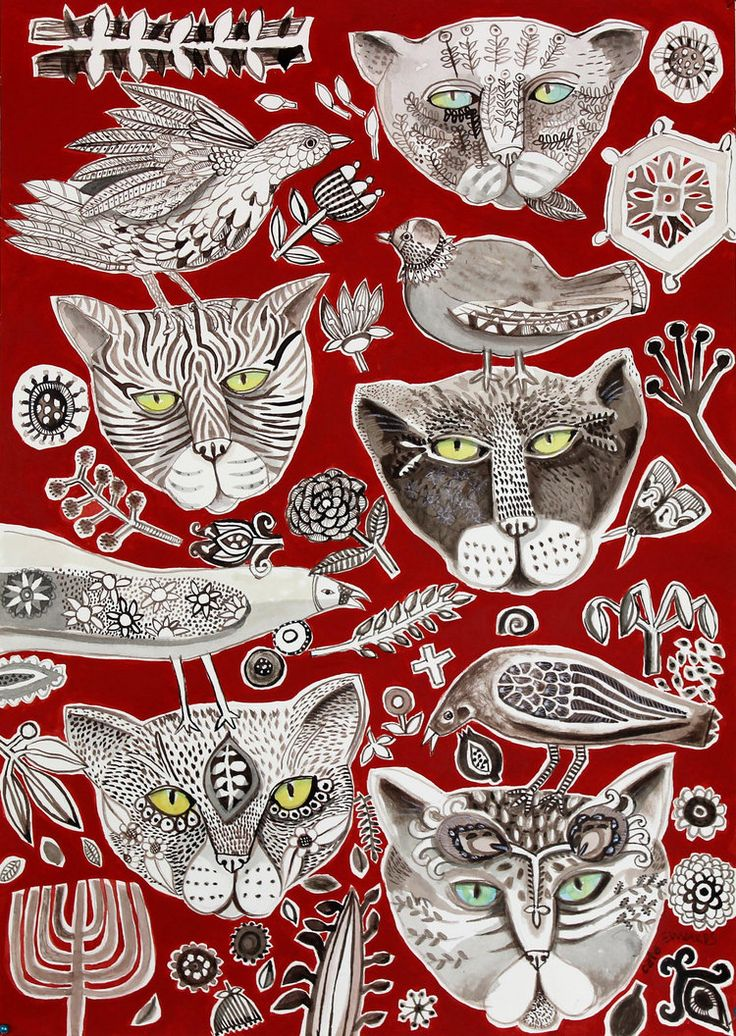 Cate Edwards ~ Here Kitty