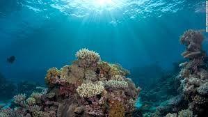 A descoberta do conhecimento estratégico no oceano complexo.  Leia aqui o texto…