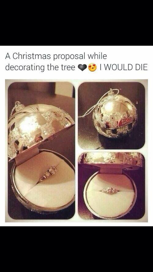 This would be so cute while decorating the tree make sure she grabs that one to put on the tree. Make sure your recording all of it