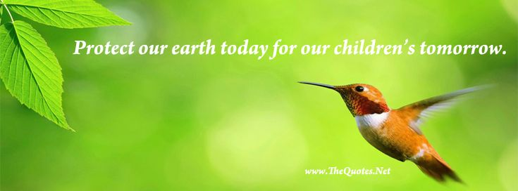 Facebook Cover Image - EarthDay. Protect our earth today for our childrens tomorrow