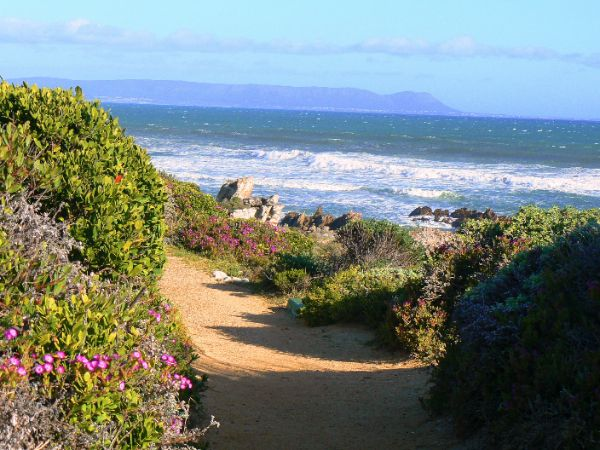 The Cliff path in Hermanus -    Where else can you traverse an entire town along its coast? With its extraordinary diversity of scenery, rocky coves, sandy beaches and secluded forest glades, the Cliff Path is unequalled anywhere.
