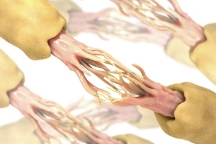Learn about nerves http://www.poandpo.com/in-sickness-and-health/learn-about-nerves/