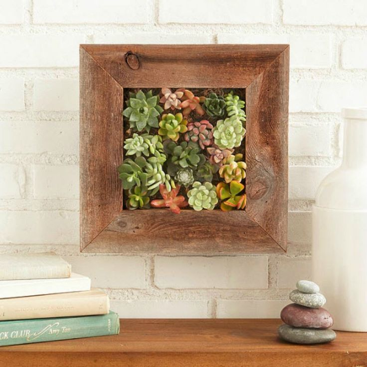 Succulent wall garden // 14 Gorgeous Ways to Display and Decorate with Succulents