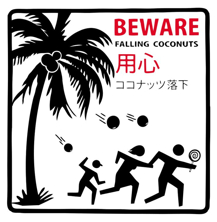 BEWARE FALLING COCONUTS sign in Honolulu Hawaii-Vector - Death by coconut - Wikipedia, the free encyclopedia