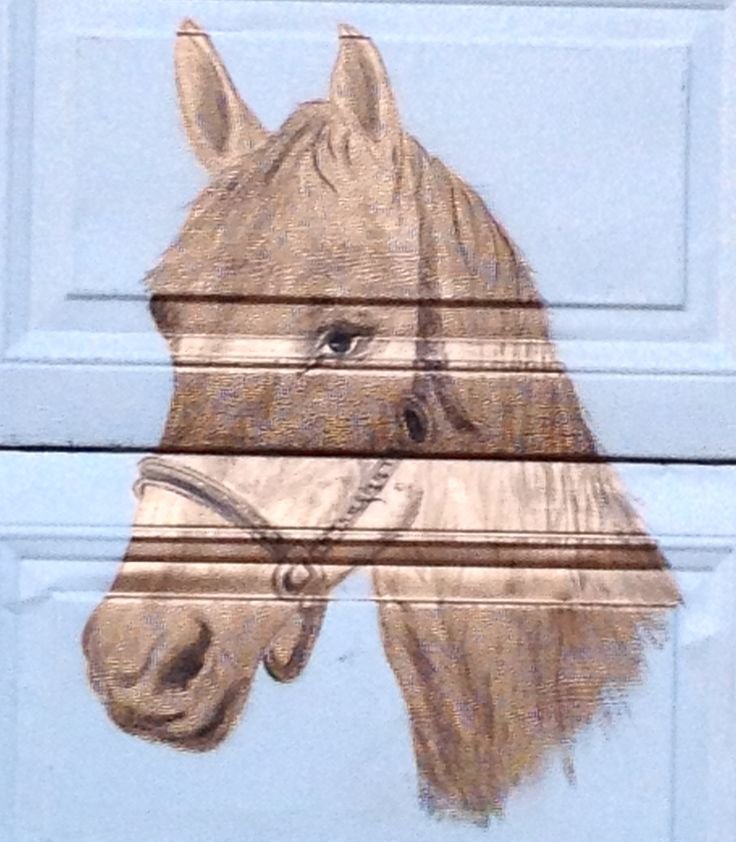 Horse on my Garage door