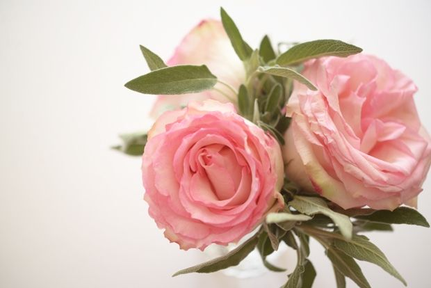dusty pink rose + sage: Pink Roses, Cashmere Dusty Roses, Flower Herb, Blog Cupcakesandcashmere Rose, Floral Floristry, Dusty Pink, Small Flower, Flower Floral, Herb Arrangements