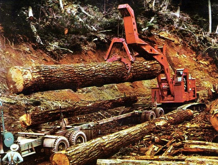 Logging Equipment Picture Galleries