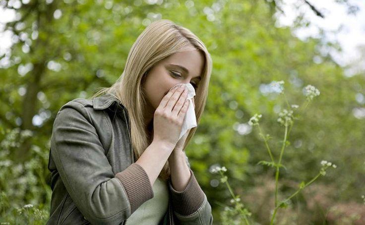 Más de 850 personas con asma grave se benefician del programa Aire