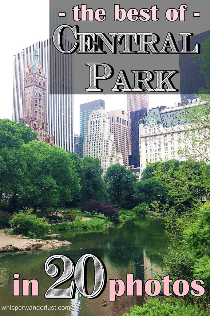 The best of Central Park in 20 photos http://www.whisperwanderlust.com/the-best-of-central-park-in-20-photos/