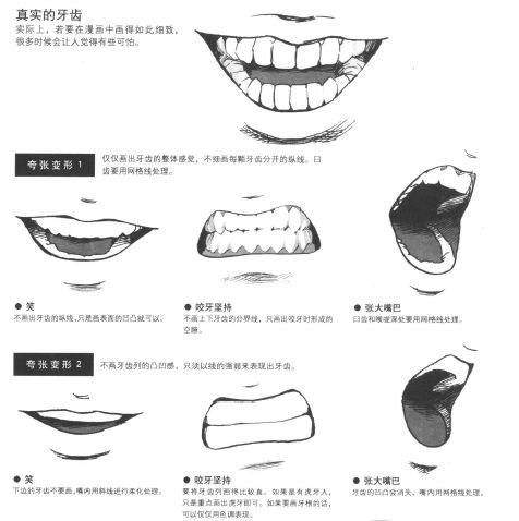 17 Best images about Draw Different Types of Teeth (fangs ...