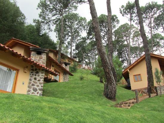 Hotel Bosque Escondido