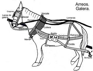 """Arreos para carro de varas de una sola mula. Cortesía de Amigos del Museo Etnológico """"Joaquín Arias"""", Santa Cruz de la Zarza (Toledo) España."""