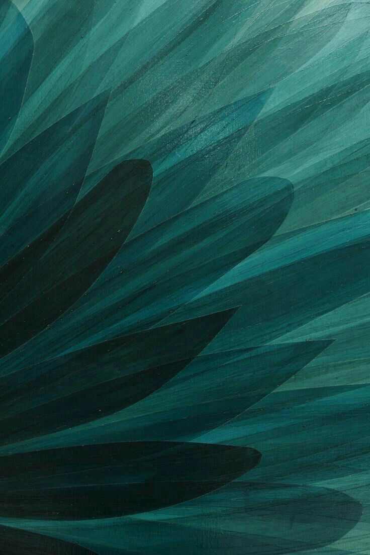 Quetzal Green Teal Art Teal Wallpaper Teal Background
