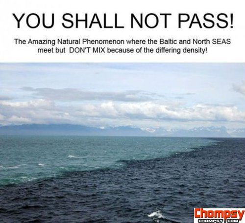 place in alaska where 2 oceans meet but dont mix between my personality