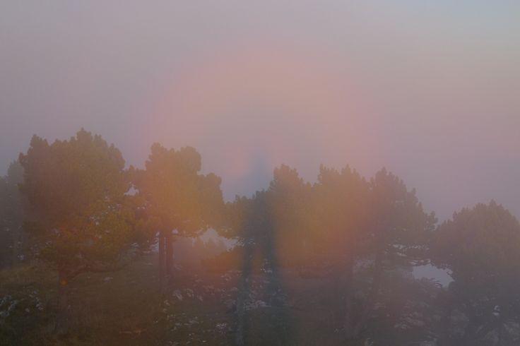 Spectre de Brocken    Halo  Il m'est déjà arrivé plusieurs fois, lors d'une randonnée, de voir mon ombre projetée contre un nuage ou de la brume et de voir un halo de type arc-en-ciel. On appelle cela un spectre de Brocken. En Chine le nom est la Lumière de Boudha.  https://www.transpiree.com/rubrique/spectre-de-brocken/