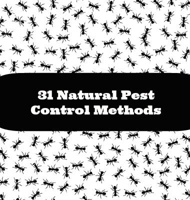 The Undeniable Factual Statements About Home And Garden Pests