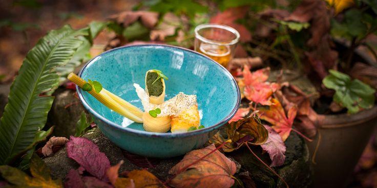 Restaurant De Harmonie - Westersingel 95 Rotterdam heeft een geweldige tuin met een moestuin waar de koks hun eigen groenten, kruiden, frambozen en bloemen kweken