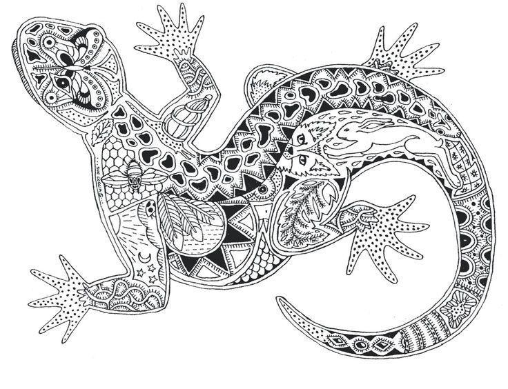 23 besten zentangle tiere für workshop bilder auf