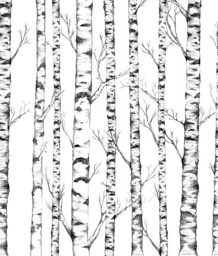 Tree Wall Panel A lovely silver birch tree illustration art panel on clean white background