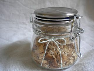 Homemade Cinnamon Apple Instant Oatmeal Mix