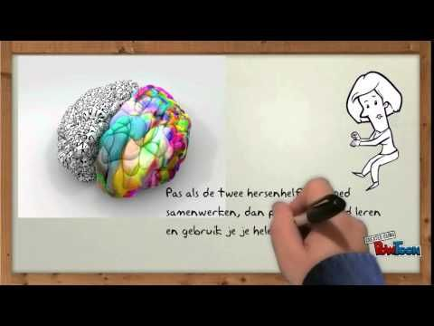 Werking van de hersenen - YouTube Vanaf 3:15 leren