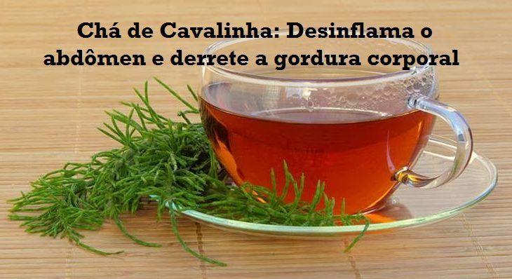 Chá de Cavalinha desinflama o abdômen, queima gordura corporal dentre muitos outros benefícios à saúde! - Tudo pela Saúde