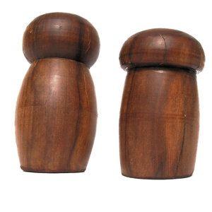 Träsvampar