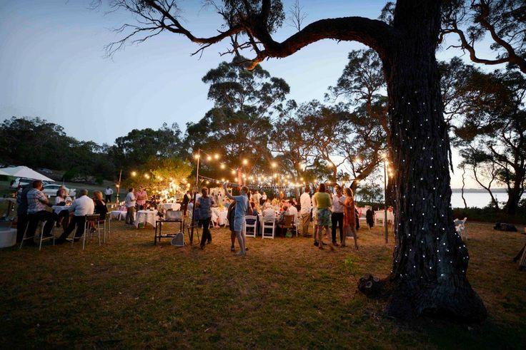 Bare Bulb Festoons - Festival Wedding www.albanyeventhire.com.au