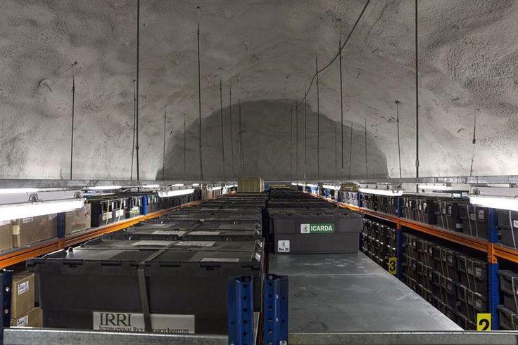 Deposito Sotterraneo Globale dei Semi in Norvegia 04