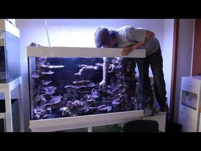 VIDEO: Real Reef Aquascaping with Youngil Moon