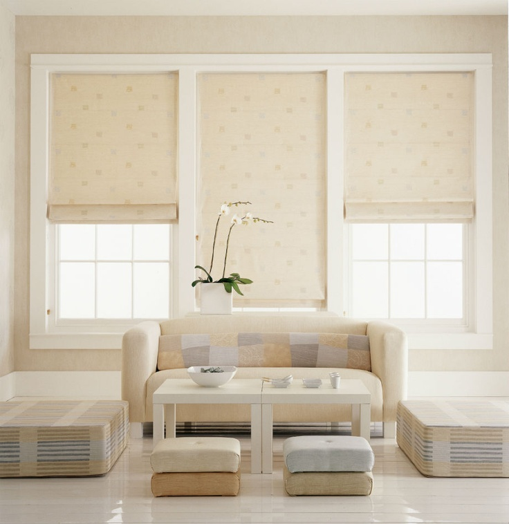 Emejing Living Room Blinds Pictures Amazing Design Ideas