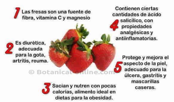 Caracteristicas de la fresa