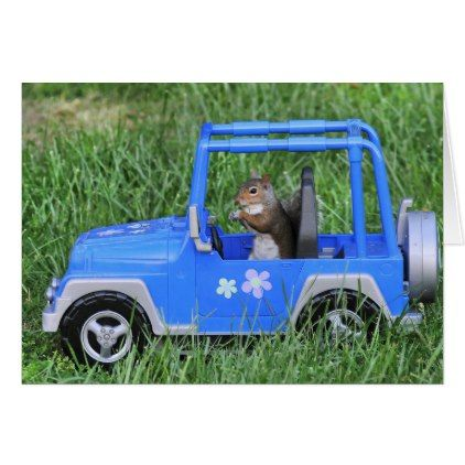Squirrelly Driver. Card  $4.50  by TElbertImages  - cyo diy customize personalize unique