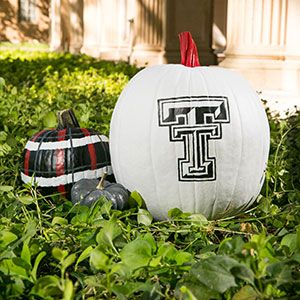 Texas Tech University, Pumpkin Decorating patterns, how cute are these :)