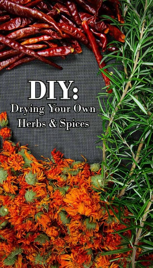 DIY: How to dry homegrown herbs