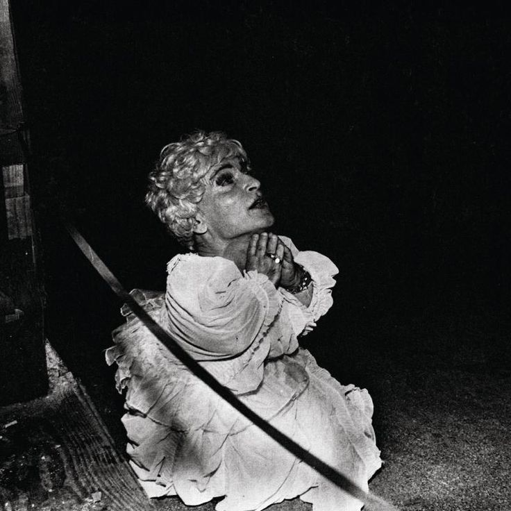 DEERHUNTER   'HALCYON DIGEST'   The acclaimed experimental noise rock band lead by Bradford Cox reveals a quieter, sometimes gentler Deerhunter than expected on Halcyon Digest. Instead of emphasizing sonics that spiral out into the stratosphere, the band