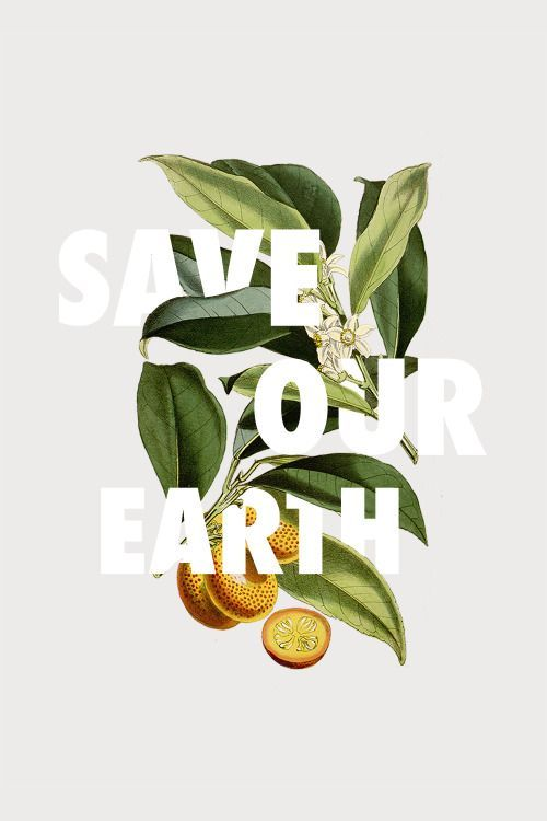 environmental quotes // sustainable eco green quotes // natural, organic, vegan friendly, cruelty free // plants, sustainability Save Our Earth, Save The Planet, Save Planet Earth, Graphic Design Typography, Graphic Design Illustration, Creative Typography, Design Illustrations, Typography Art, Photoshop