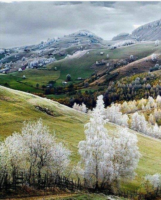 Bu Sabah   ( Trabzon Tonya /Karşılar)
