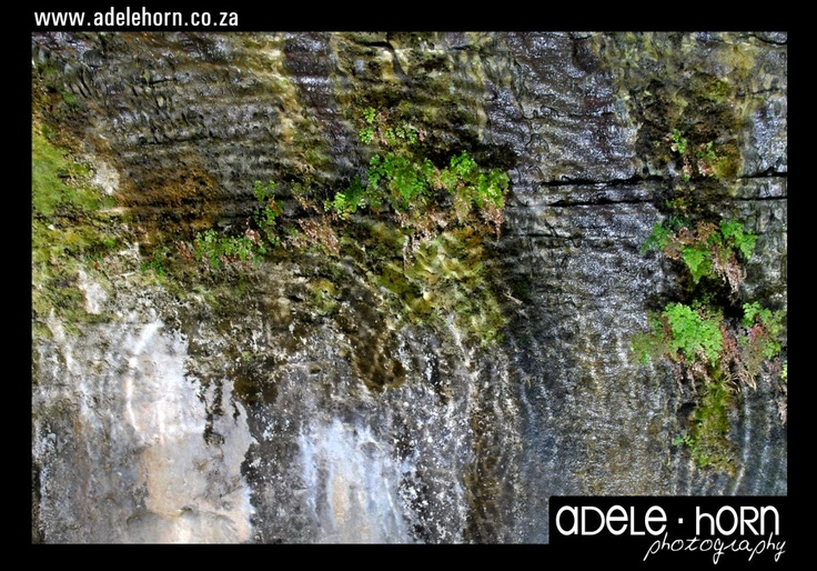 water rippled reflected off cave wall at meiringskloof