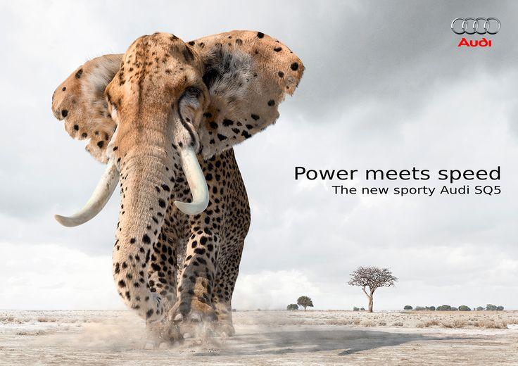 Audi Power meets speed