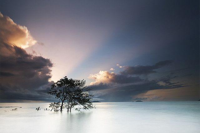 Stunning. Beach of Bourda, Cayenne (French Guiana)