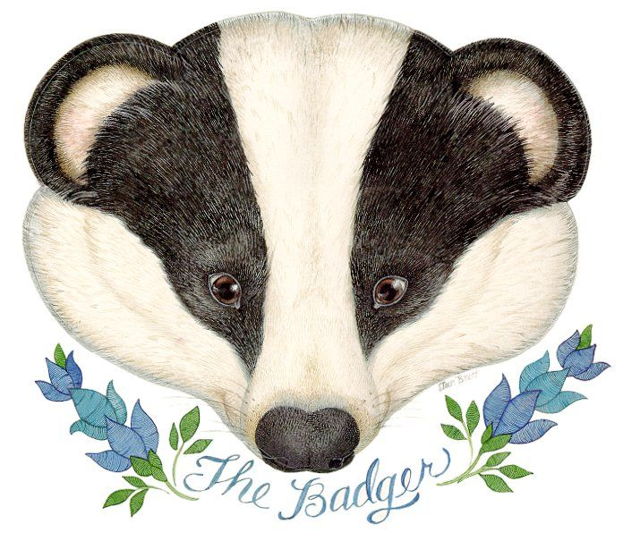 The Mitten - The badger