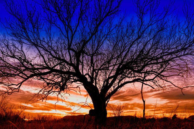 Sunset - http://www.istantidigitali.com/sunset/