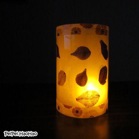 Dried Flower Lantern