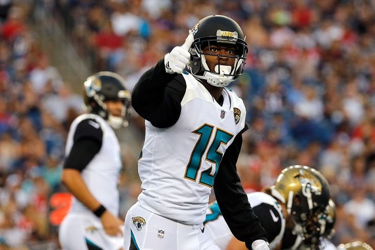 The Jacksonville Jaguars have told receiver Allen Robinson that they will not use the franchise or transition tag on him, the team said Tuesday, the final day for NFL teams to use the tags....