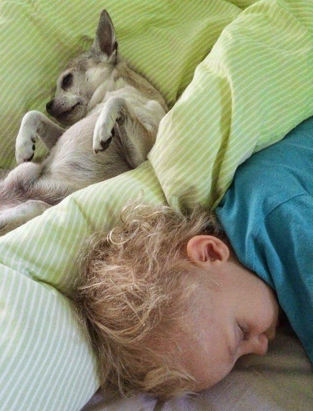 Äiti yrittää: Täydellinen aamu - Mehulinko arvonta!!!