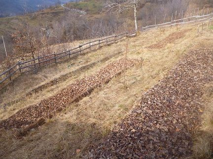Lasagna garden su curve di livello a Scagnello (CN)